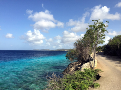 Bonaire Photo 1