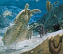 Cambrian Explosion