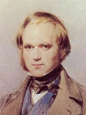 Charles Darwin as a Young Man