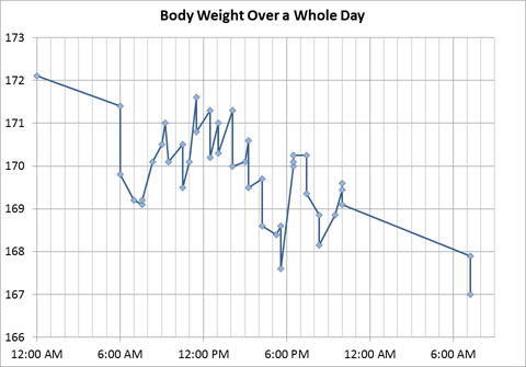 Body Weight Over a Whole Day